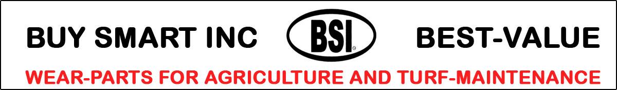 BSI Header Image